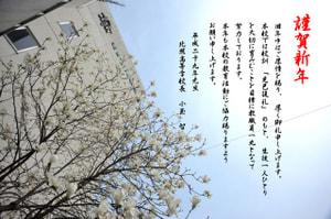 平成29年正月 本年もよろしくお願いいたします。